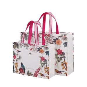 Printing Available Colorful Eco Friendly Non-woven Shop Non Woven Bag